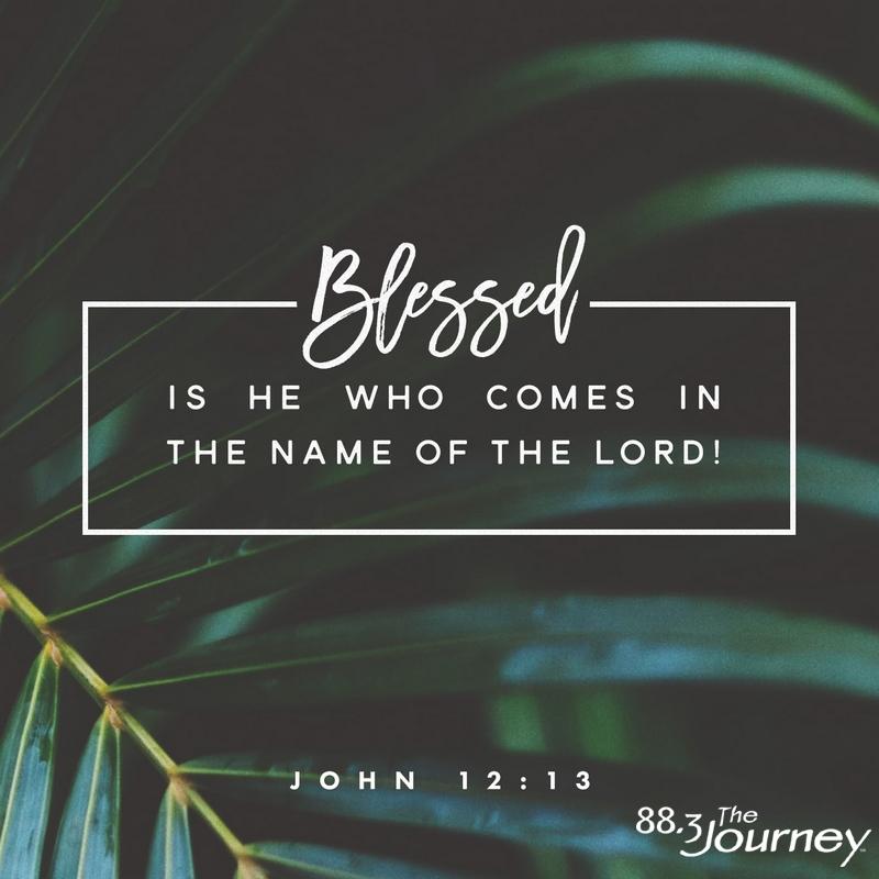 November 20th - John 12:13